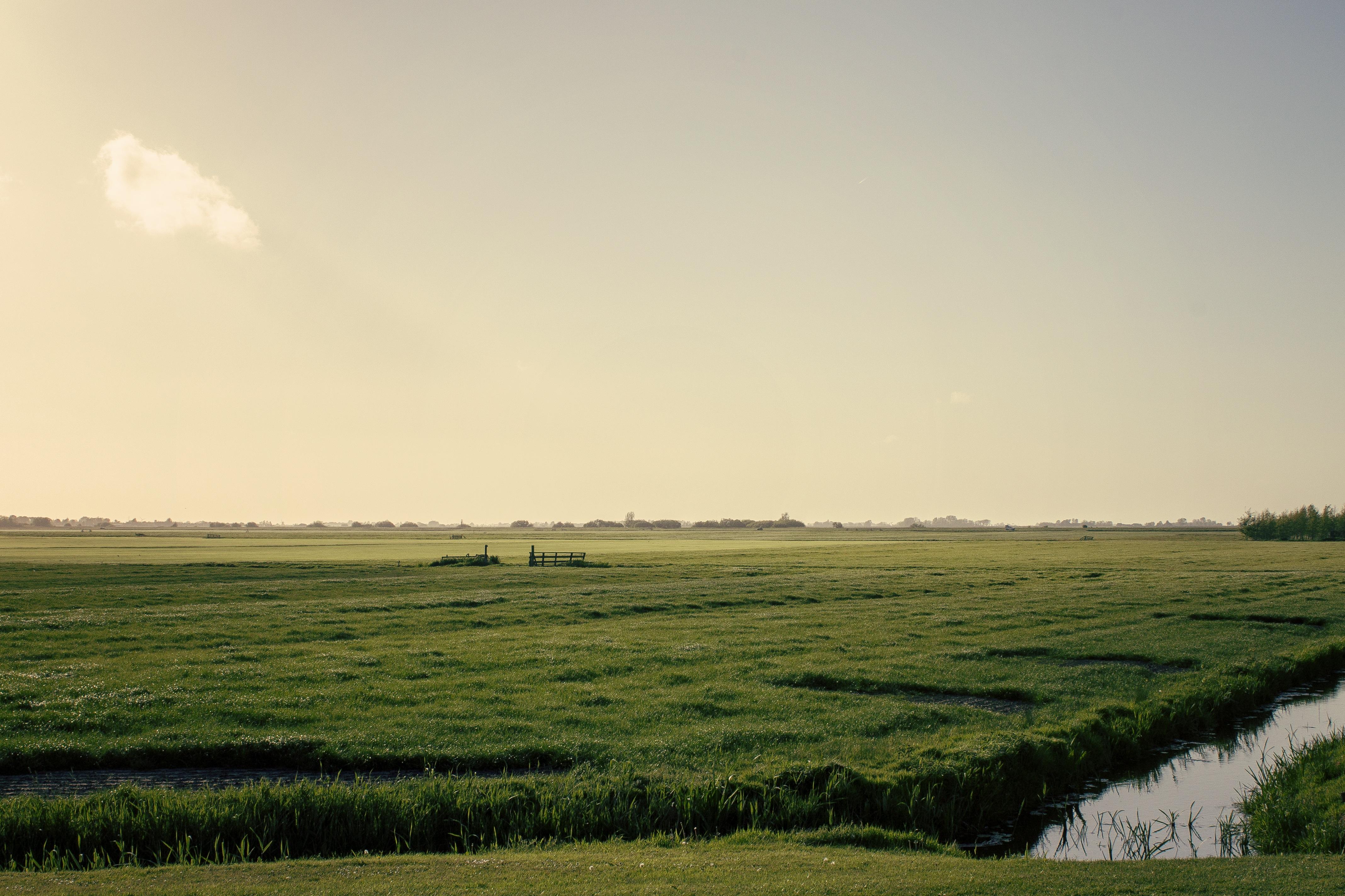 Weite Fläche Friesland